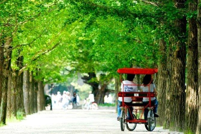 Spring 4 days Seoul&Mt Seorak Cherry blossom with Nami & Everland on 7 to 14 Apr, Incheon, COREA DEL SUR