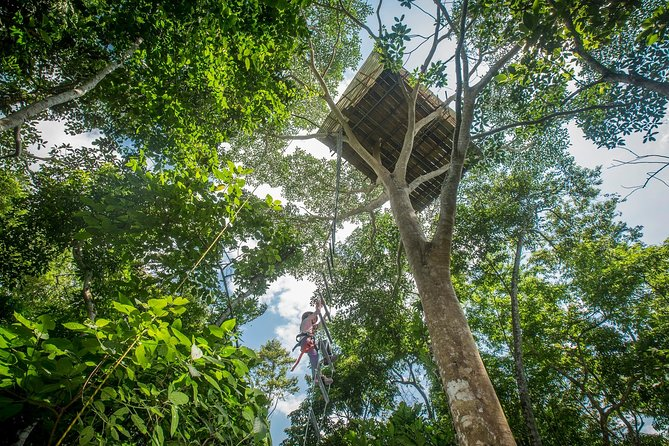 This unique experience takes us to the edge of the Cordillera Escalera Reserva. We climb up a 20 meter tall ladder to reach the amazing Vertical Journey Treehouse. Here we have a picnic on top of the trees and a chance to see many wild jungle animals. Finally we go down the treehouse utilizing a rapel technique that will have us enjoying the pleasure of feeling alive.