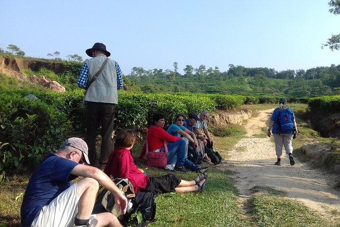 Private Tour: 5 Days - Bangladesh Nature & Culture Tour - North-eastern part, Dhaka, BANGLADES