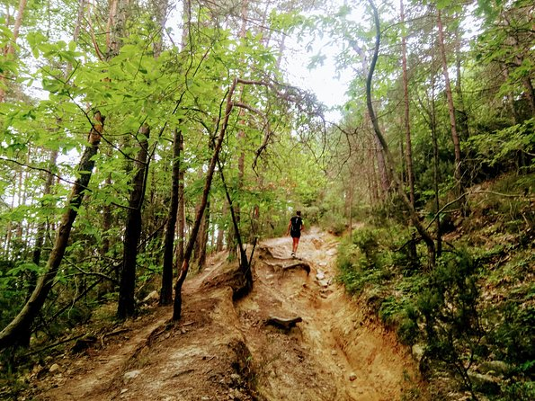 There are many great hikes in the hills of Sanremo but they can be hard to find and difficult if you don't know where you are going. Let us guide you through the hills on a route which we can plan and adjust to suit you. <br><br>We can also provide transport to various points of the hike, so you can get a head start if you don't want to start at the bottom!