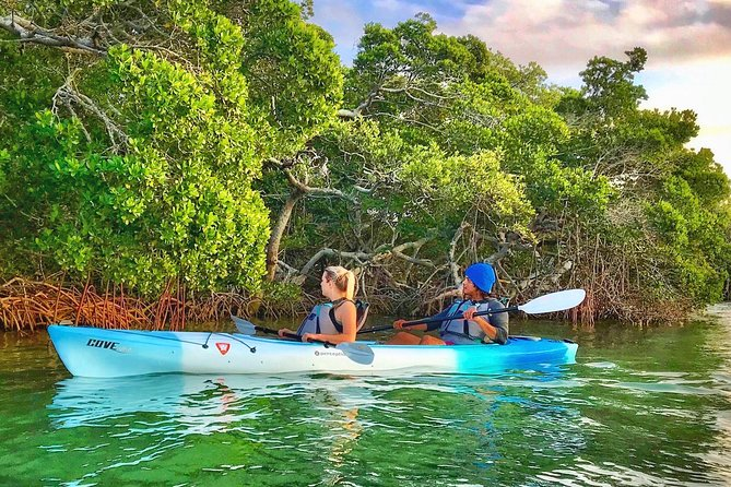 Join Coastal Kayak Charters for a small group guided kayak tour of the Shell Key Preserve. We are St Pete's top rated kayak tour company and focus exclusively on small groups (6-8 guests) and private tours. Our trips offer more personalized service and better wildlife viewing opportunities while out on the water. We will explore hidden mangrove tunnels (tides permitting), shallow seagrass meadows, and stop on Shell Island for time to swim, look for shells, or just relax and enjoy the beach. Our tours are designed for beginners and experienced kayakers alike. Come explore with local professionals who love what they do and see the difference for yourself. <br>