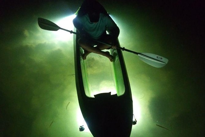 We offer the Ultimate Adventure on our Glass Bottom LED illuminated Kayak Night Tours! In fact no one else offers this experience anywhere in the world with how we feed the fish and the extremely powerful self developed underwater light system that we use! At our main tour site, we'll first visit a bird sanctuary mangrove island & sometimes they'll fly so close you can feel the air from their wings as they pass by! We'll paddle down protected waterways & see amazing underwater views along with feeding fish which is fun for everyone! There's times when the fish get so close you can even touch them! You may also see Crabs, Shrimp and other sea-life as we illuminate the waters around us. With literally nothing to do at night in the Water Sports Industry, our Glass Bottom Kayak LED illuminated Night Tours are perfect for families, friends, large groups, or an unforgettable date night under the stars and moon!