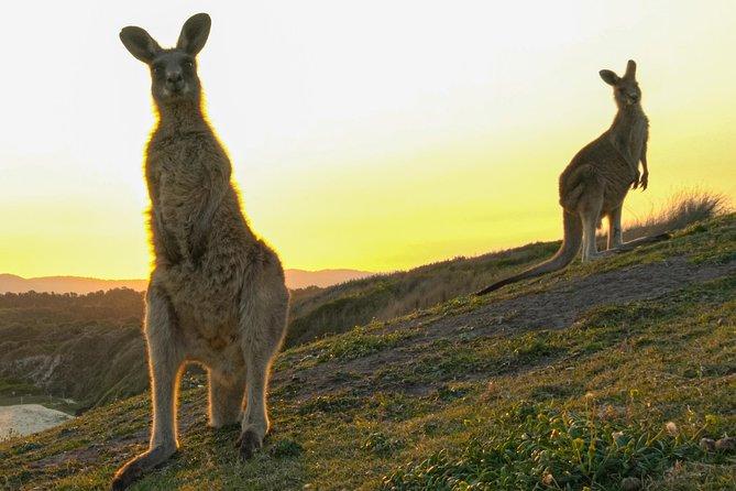 Sunset Experience, Coffs Harbour, AUSTRALIA