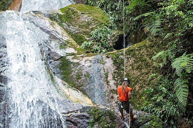 Esta aventura nos lleva al «Área de Conservación Regional Cordillera Escalera». Dentro de esta zona se formará parte de las siguientes actividades: caminatas por la selva, escalada y pícnic en la Casa de árbol, descensos a rápel, baño en piscinas naturales, canotaje y canopy en el Río Mayo, y más.<br>En este paquete pernoctaremos en «Shimiyacu Amazon Lodge». Ubicado en la entrada al «Área de Conservación Cordillera Escalera».