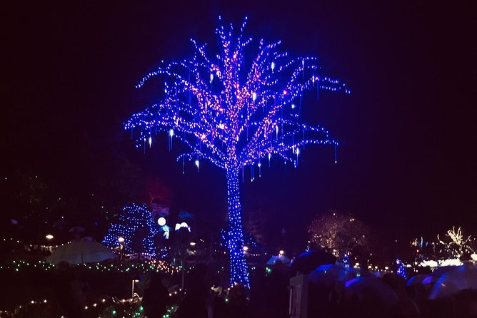 Private Christmas Lights Tour and Butchart Gardens, Victoria, CANADA