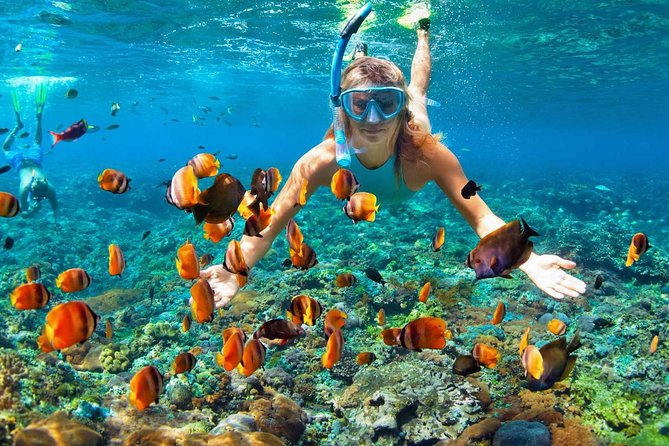 This new Mactan Island Hopping tour package lets you experience the beauty of the islands surrounding Mactan Cebu. You will be able to visit 3 main islands, Hilutungan, Caohagan and San Vicente marine sanctuary in Olango island. Included in this package is pick up and drop off from your hotel in Cebu or Mactan, and lunch. Good thing about this package is that this is a private tour and not shared with others. Manage your own time.