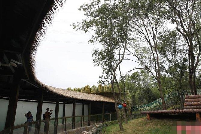 Panda Park (Zi Qin Lake) Tour/Nanjing, Nanjing, CHINA
