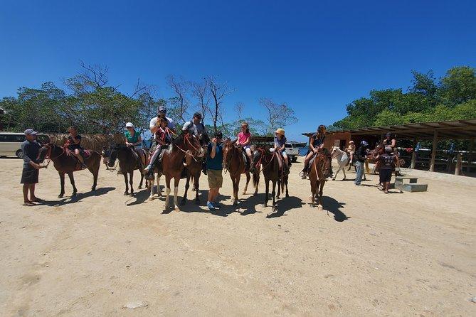 Roatan Excursion: Horseback Ride / Plus Sloth Park and Glass Bottom Boat, Roatan, HONDURAS