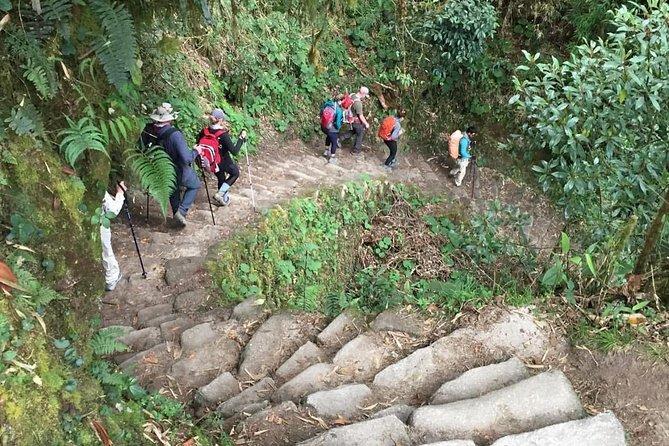 Inca Trail To Machu Picchu 2-Day | Small Group Service |, Cusco, PERU