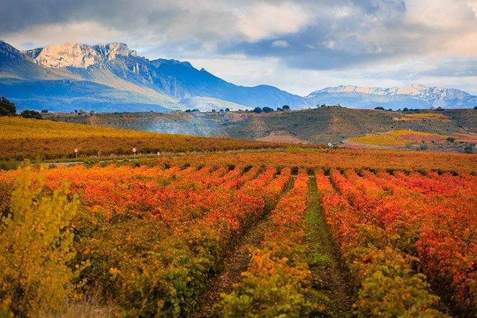 Rioja Wine Tour, Pamplona, ESPAÑA