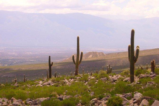 Recorrido de medio día a Tafí del Valle de San Miguel de Tucumán, San Miguel de Tucuman, ARGENTINA