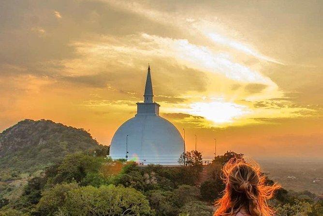 Sri Lanka Tour/Privet Vehicle/12 days with driver+vehicle+accommodation H/BBasis, Negombo, Sri Lanka