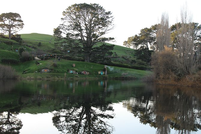 Hobbiton and Waitomo Caves (Two Cave Combo) Waitomo and Ruakuri, Auckland, NUEVA ZELANDIA