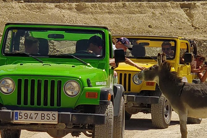 2 hours in the Wildlife Park Safari Aitana and 5 hours Jeep Tour in the mountains. Self Drive in an open Jeep Wrangler You experience the smells and feel the freedom off the mountains. We stay on the asphalt and paved roads so that you can enjoy the nature in the Costa Blanca without any worries.