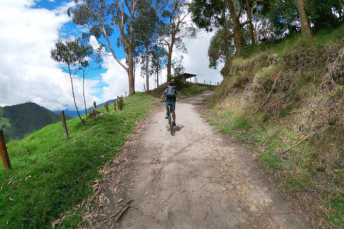 biking to the wax Palm Forest, Pereira, COLOMBIA