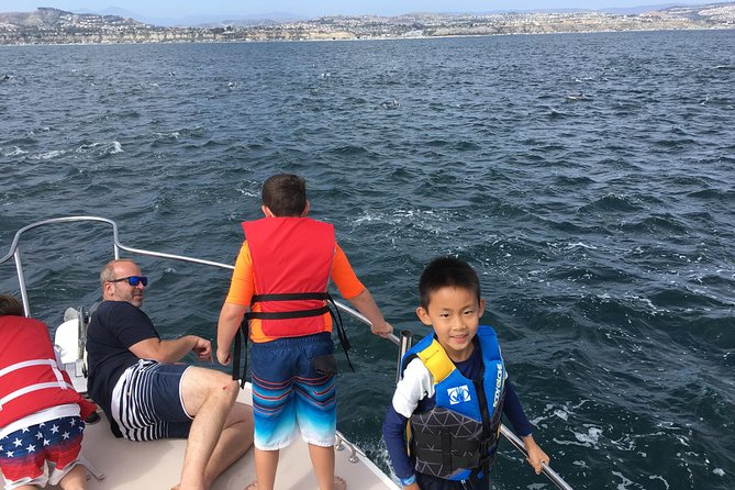Family and Private Group Whale and Dolphin Watching, Dana Point, CA, ESTADOS UNIDOS
