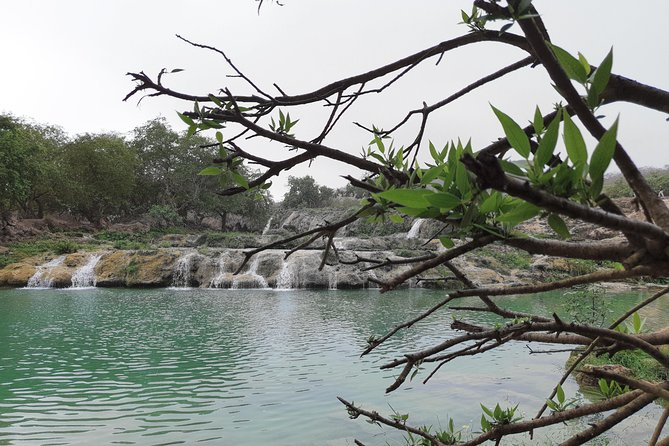MÁS FOTOS, Half Day East Salalah Tour in Dhofar Mountains and Beaches By Beautiful Salalah