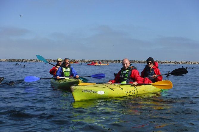 Pelican Point Kayaking / Sandwich Harbour 4x4 Combo Tour, Walvis Bay, Namibia