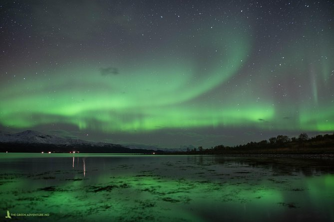 Private Northern Lights Chase with Campfire, Tromso, NORUEGA