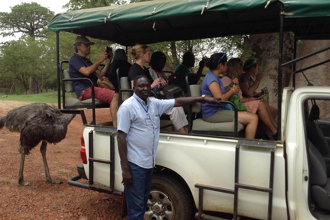 FULL-DAY SAFARI AND PINK LAKE TOUR (minimum 2 pax), Dakar, SENEGAL