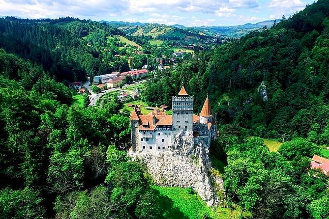 Libearty Bear Sanctuary and Dracula's Castle - Day Tour from Bucharest, Bucarest, RUMANIA