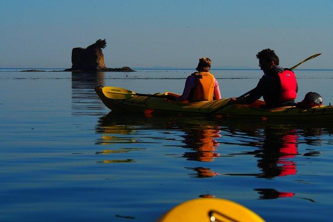 MORE PHOTOS, Half-Day Sea Kayaking Trip Near Olympic National Park