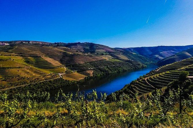 Douro Valley Tour - A Delicious And Breathtaking Experience - All Included, ,
