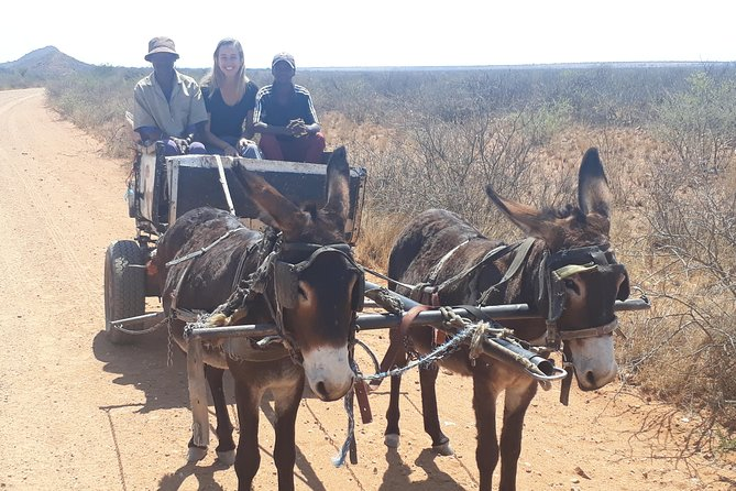 Experience local life, culture, sights, dances, interaction, and sounds that our bush has to offer. A very unique and unforgettable Namibian cultural adventure.<br><br>What to expect:<br><br>• Learn about the real issues which face ordinary people in these communities in the Eastern Kalahari area.<br>• Come witness the reality between the old and new world of our local people.<br>• Visit a township and witness the life challenges but yet see smiles on their faces.<br>• Make friends with Namibians whom you would not otherwise meet.<br>• Support the local communities through, volunteerism, cultural and community tourism<br>• Be part of and seek to assist local communities trying to support themselves through income generated projects and community development programmer.<br>• Escape to a peaceful and tranquil rural environment spending plenty of quality time with your local host<br>• There is an opportunity for those want to switch-off and meditate in our Kalahari Bush.<br>