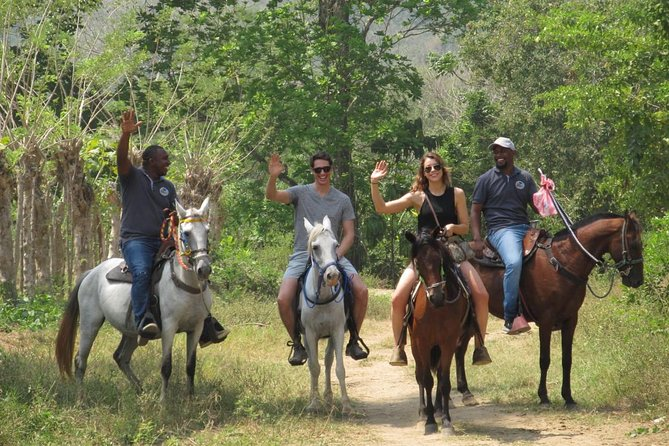 This is the only horseback tour offered in Palenque and best way to be able to see the town, learn about its incredible history and spend some time in the surrounding jungle teeming with fauna and flora. Offered for all levels of riders beginners and experts.
