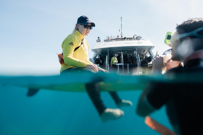 Full Day Snorkel In The Great Barrier Reef, The Whitsundays y Hamilton Island, AUSTRALIA