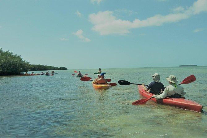Crucero de medio día con paseo en kayak y buceo de superficie, Cayo Hueso, FL, ESTADOS UNIDOS