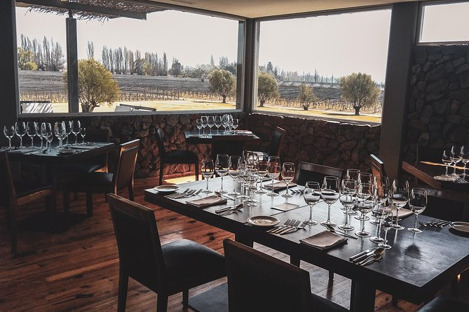 Lujan Deluxe - Premium Wine Tour with Gourmet Lunch, Mendoza, ARGENTINA