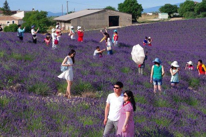 Provence Tour, ,