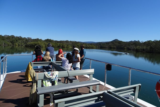 Morning Eco Rainforest River Cruise, Brunswick Heads, AUSTRALIA