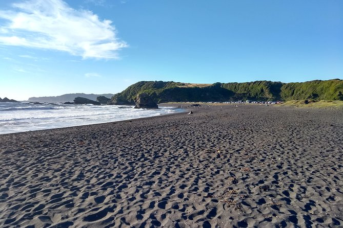 In this tour, we will visit the estuary of the widest and second longest river in Chile, and the most symbolic in our region: Biobío River. Along with that, we will visit Pedro del Río Zañartu Museum. Finally, we will visit the beautiful and hidden Rocoto Beach.