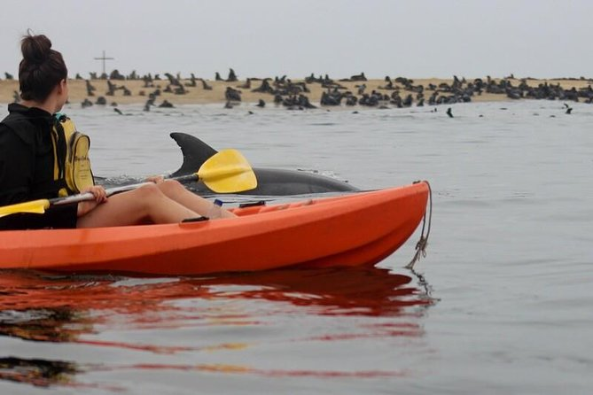 Namibia Kayak Tours provide the following:<br><br>*Scenic transfers from Walvis Bay to Pelican Point and return<br>*Experienced guides<br>*Protective clothing and floatation devices<br>*Dry bags for cameras<br>*Sit on top double kayaks<br>*Bottled Water on-board<br>*Picnic on the beach (includes coffee,tea,fruit juice and a light snack)<br><br>What you need to bring:<br><br>*Warm clothing and a towel for afterwards (you might still get wet)<br>*Hat and sunscreen<br>*Camera<br><br>After collecting you from the waterfront in Walvis Bay, go on a scenic drive past the Walvis Bay waterfront and salt refinery on route to Pelican Point Peninsula, where you will have the chance to kayak amongst countless seals, dolphins and other marine life.<br><br>Red Dune Safaris provides:<br>The second part of the tour takes you deep into the Namib desert where the huge dunes meet the Atlantic. Many interesting sights to see including desert fauna and flora, off road driving on the sand, lunch that includes finger snacks, sparkling wine.