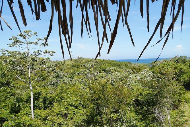 Best of Roatan and Beach Excursion, Roatan, Honduras