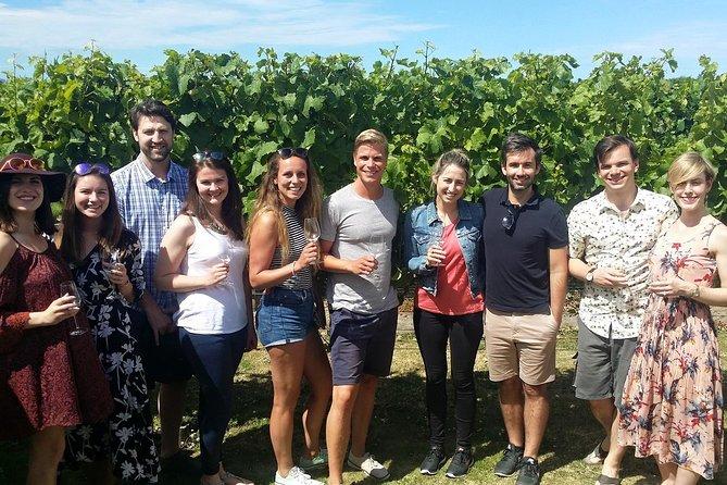 MÁS FOTOS, Half-Day Marlborough Wine Tour & Beer Tour