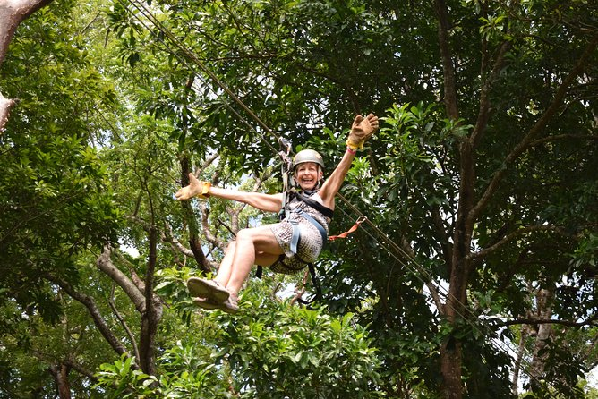 Los perezosos juegan en la selva, Roatan, HONDURAS