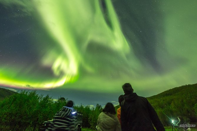 Northern Lights Private tour with your special ones - Greenlander, Tromso, NORUEGA