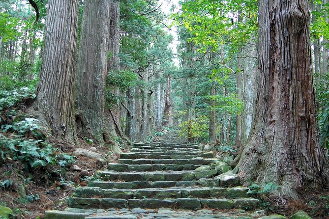 1.)A professional guide will guide you..<br>2.) Walking tour and Enjoy nature..<br><br>Schedule : <br>7:50 Meet guide Hotel Lobby<br>8:16 Departure from Yunomine Onsen <br>8:22 Departure from Watarase Onsen<br>8:23 Departure from Kawayu Onsen <br>8:50 Arrival Hasshinmon Oji bus stop <br>~ [ Kumanokodo Walking ] <br>~ [Walking] Hashinnmon Oji - Mizunomi Oji - Fushiogami Oji <br>~ [Walking] Sangenchayayaseki - Haraido Oji - Hongu Taisha<br>~ [Walking] From Hongu Taisha to Yunomine Onsen<br>17:00 Arrival Yunomine Onsen <br> End<br>