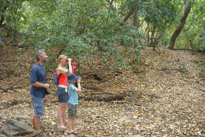 Sigiriya Nature Walk, Village Tour & Breakfast, Sigiriya, SRI LANKA