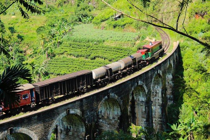 Sri Lanka tours 12-Day wildlife Tour with driver,Car or Van and accommodations, Negombo, SRI LANKA