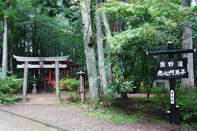 Walking tour with private guide .<br><br>Schedule:<br>7:50 Meet guide at Yunomine Onsen Hotel <br>8:16 Departure from Yunomine Onsen <br>8:22 Departure from Watarase Onsen<br>8:23 Departure from Kawayu Onsen <br>8:50 Arrival Hasshinmon Oji bus stop <br>~ [ Kumanokodo Walking ] <br>~ [Walking] Hashinnmon Oji - Mizunomi Oji - Fushiogami Oji <br>~ [Walking] Sangenchayayaseki - Haraido Oji - Hongu Taisha<br>12:00 Guide end service at here<br> (⇓⇓⇓next schedule will going by customer themselves⇓⇓⇓)<br>⇓⇓⇓⇓⇓⇓⇓⇓⇓⇓⇓⇓⇓⇓⇓⇓⇓⇓⇓⇓⇓<br> Customer can take bus to Kitanabe station <br> ⇓⇓⇓⇓⇓ by bus ⇓⇓⇓⇓⇓<br>12:17 Departure from Hongutaisya Mae<br>13:50 Arrival KiiTanabe Station <br> ⇓⇓⇓⇓⇓ by bullet train ⇓⇓⇓⇓⇓<br>14:45 Departure from Kiitanabe station<br>16:50 Arrival Shin-Osaka station<br>