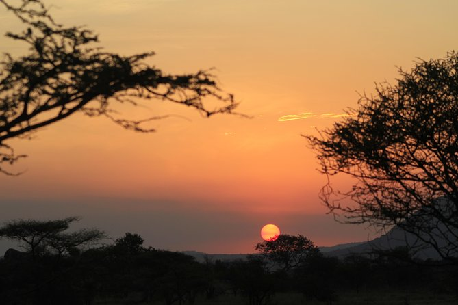 7 Days 6 Nights Tented Camp Wlidlife Safari, Arusha, Tanzania