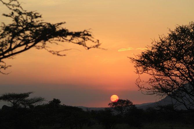 7 Days 6 Nights Tented Camp Wlidlife Safari, Arusha, TANZANIA