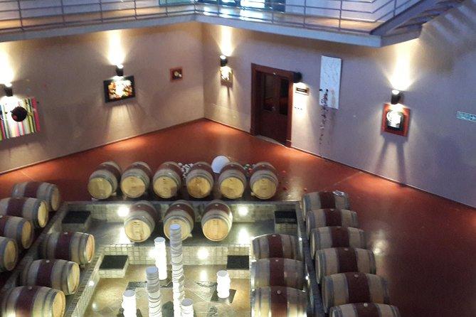 Experiencia Gourmet Ruta del Vino de la Patagonia, Cafayate, ARGENTINA