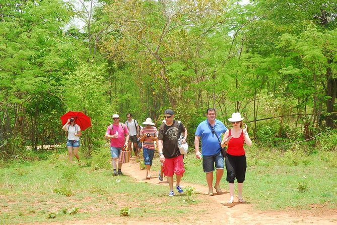 Trekking to Palaung Villages by passing the forest way and observe the tradition, culture and cultivation system of ethnic groups and learn their ways of plantation and their culture.