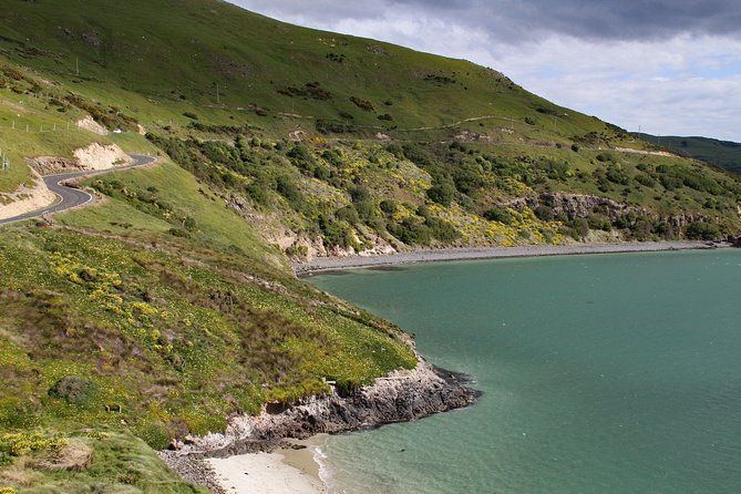 MORE PHOTOS, Otago Peninsula's remote and craggy coastline driving audio tour