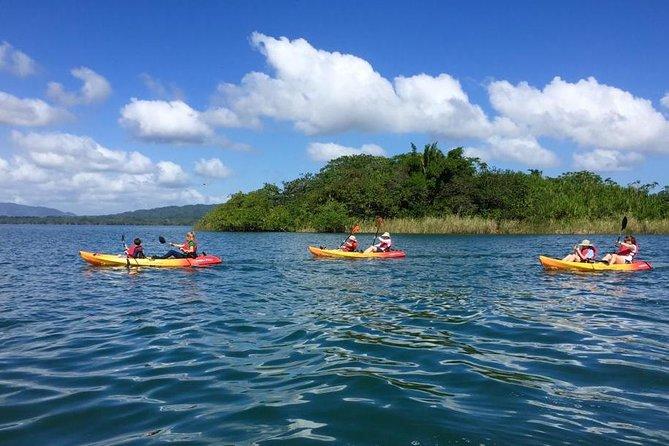 Kayak -Bird Watching Combo Tour from Puerto Quetzal, Puerto Quetzal, GUATEMALA
